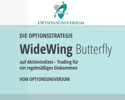 Wide Wing Butterfly